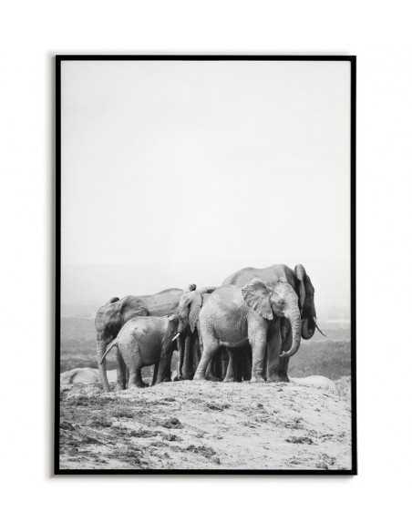 rodzina słoni, plakat skandynawski ze sloniem czarno biały