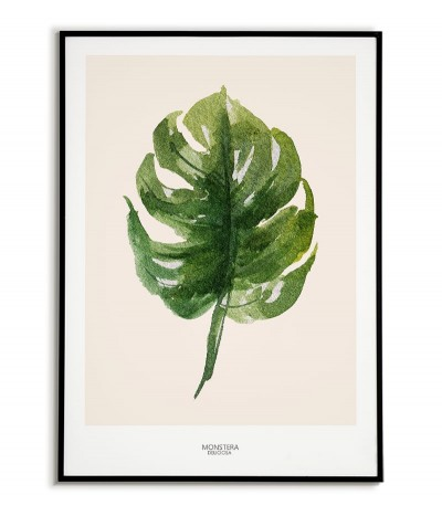 Home poster - Monstera...