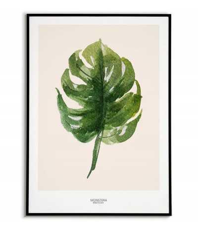 plakat botaniczny z monstera do powieszenia w domu na ścianie