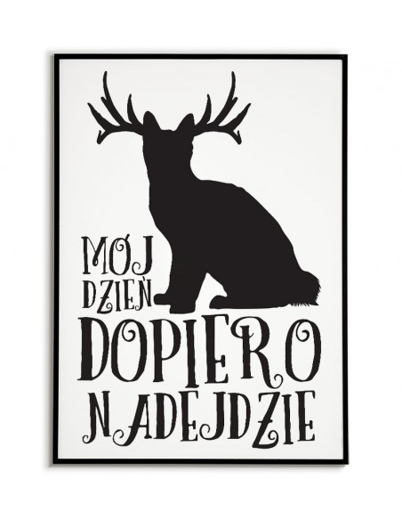 plakat skandynawski,kot, plakat, plakat do domu, plakat z kotem