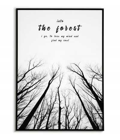 Plakat motywacyjny czarno biały z napisem i drzewami. Into the forest