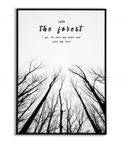 Black and white motivational poster with the words and trees. Into the forest