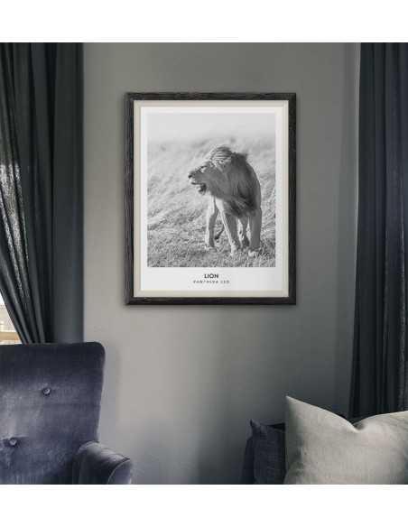plakat z lwem i napisami, czarno biały wykonany w stylu skandynawskim