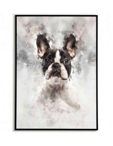 Poster with French bulldog made in watercolors. Portrait of a french bulldog. French bulldog poster