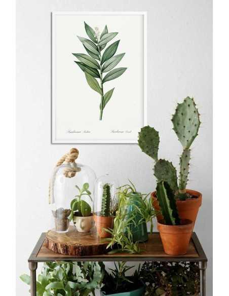 Plakat botaniczny z pięknym kwiatem, plakat rysowany ręcznie z rośliną w stylu vintage