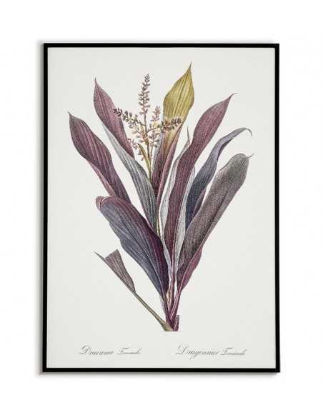 Plakat botaniczny z kwiatem w stylu vintage. Ręcznie malowany plakat to piękny wystrój każdego wnętrza