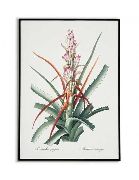 Plakat botaniczny z kaktusem, kwiat malowany ręcznie w stylu vintage.