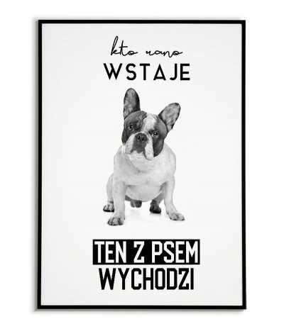 Plakat z psem - kto rano wstaje ten z psem wychodzi - Buldog Francuski