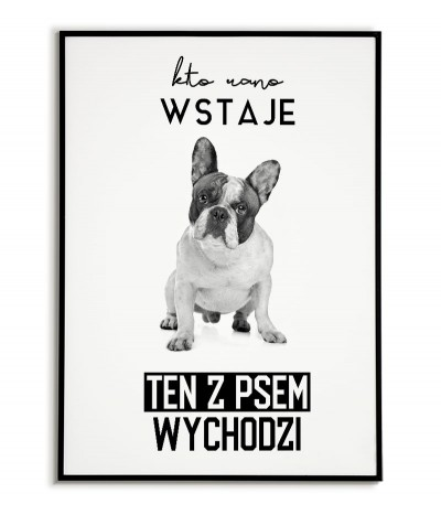 Poster with a dog - who gets up in the morning, the dog comes out - French Bulldog