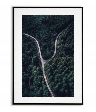 Plakat skandynawski ze zdjęciem dwóch dróg w lesie. Kolor zielony