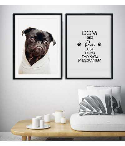 Zestaw dwóch plakatów dla wielbiciela psów.