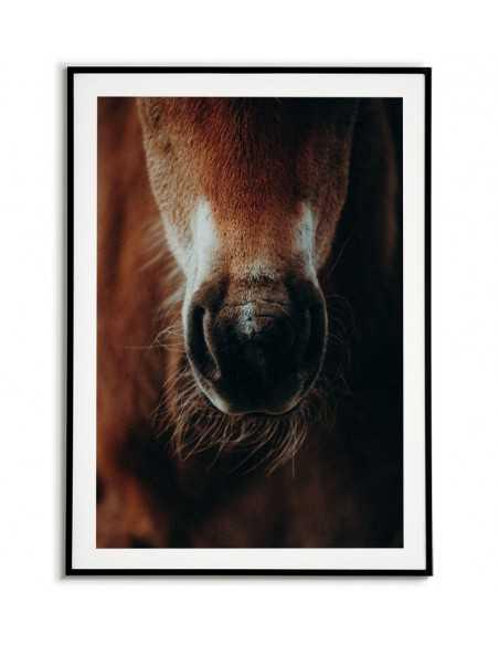 plakat, obraz do ramki w stylu skandynawskim z portretem konia