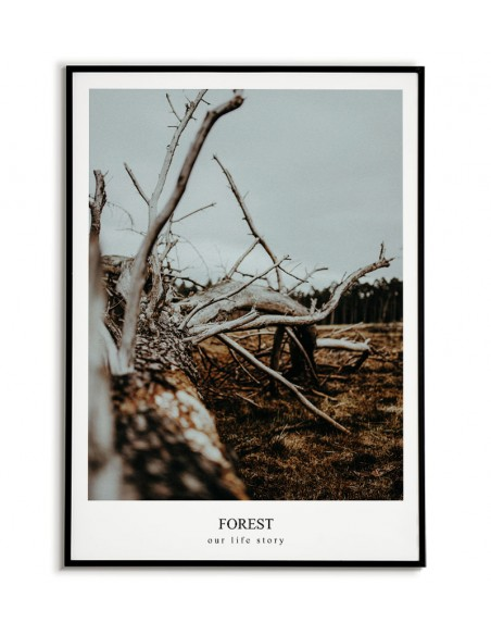 Plakat, obraz z fotografią lasu i napisem w języku angielskim. Grafika na ścianę z lasem