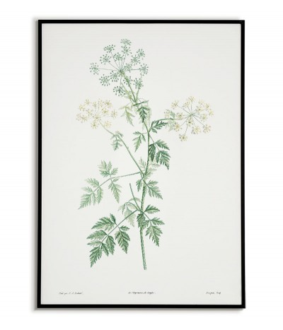 Botanical Poster - Green...