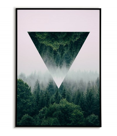 Poster forest in fog -...
