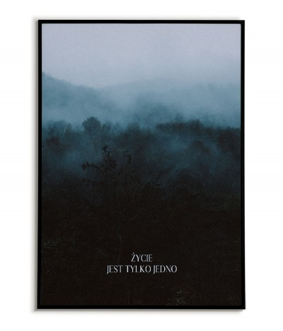 "motivational poster with the inscription ""Life is only one"" and a color photograph of a forest in the fog"