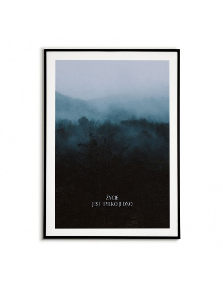 """plakat motywacyjny z napisem """"Życie jest tylko jedno"""" i fotografią kolorową las we mgle"""