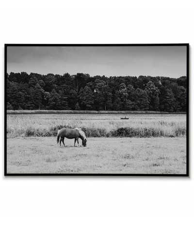 Plakat z fotografią jeziora, konia i łódki z wędkarzem. Grafika z pejzażem do ramki, czarno biała