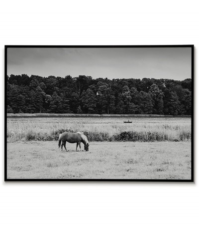 A poster with a photograph of a lake, a horse and a boat with an angler. Graphics with landscape for the frame, black and white