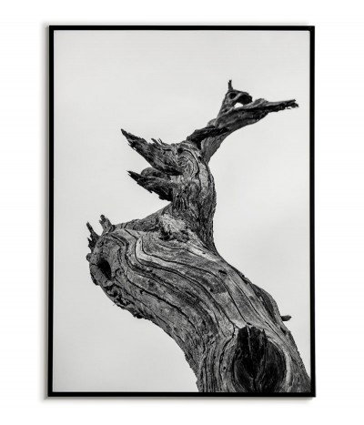 A poster with a tree trunk, black and white graphics for a frame with a tree. The poster is perfect for any modern apartment.