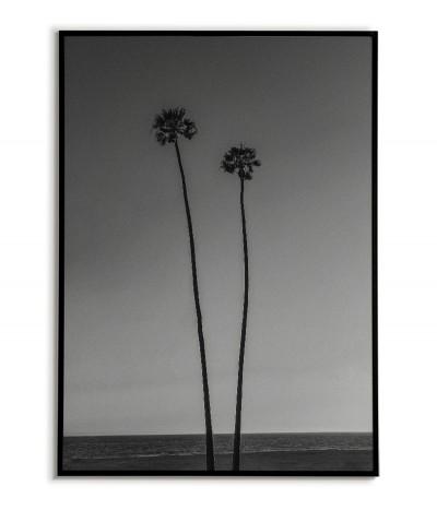 Palmy, plakat, grafika do ramki z widokiem na ocean i rosnące palmy. Nowoczesny plakat.