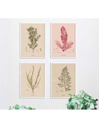Set of retro botanical posters,...
