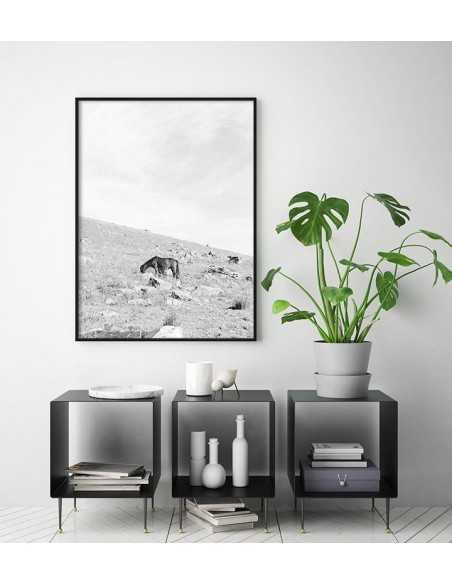 Plakat skandynawski czarno biały z dzikim koniem pasącym się w górach